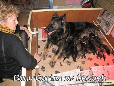Carina komt nog even langs