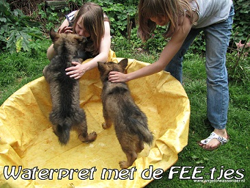 Waterpret met de FEE-tjes