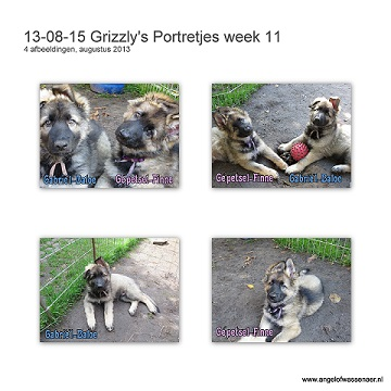 Grizzly's portretjes week 11
