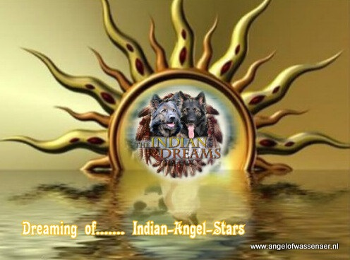 Dreaming of.... Indian-Angel-Stars