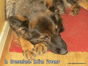 Dreaming of Indians