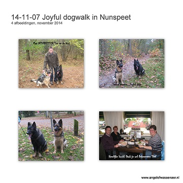 JOYFUL Dogwalk in Nunspeet met Nasho & Fee